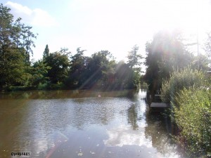 Lac de Lozère (Cyrilb1881)