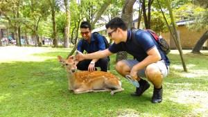 With deer