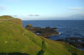 phillip-island1