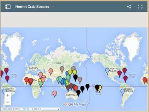 Hermit crab distribution map