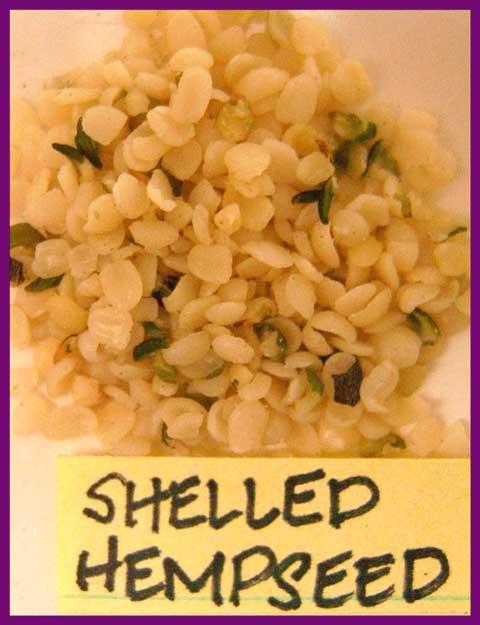 shelled hempseed