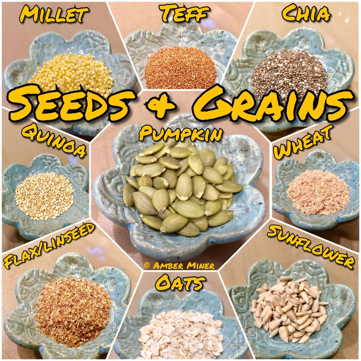 Seeds and Grains for hermit crabs