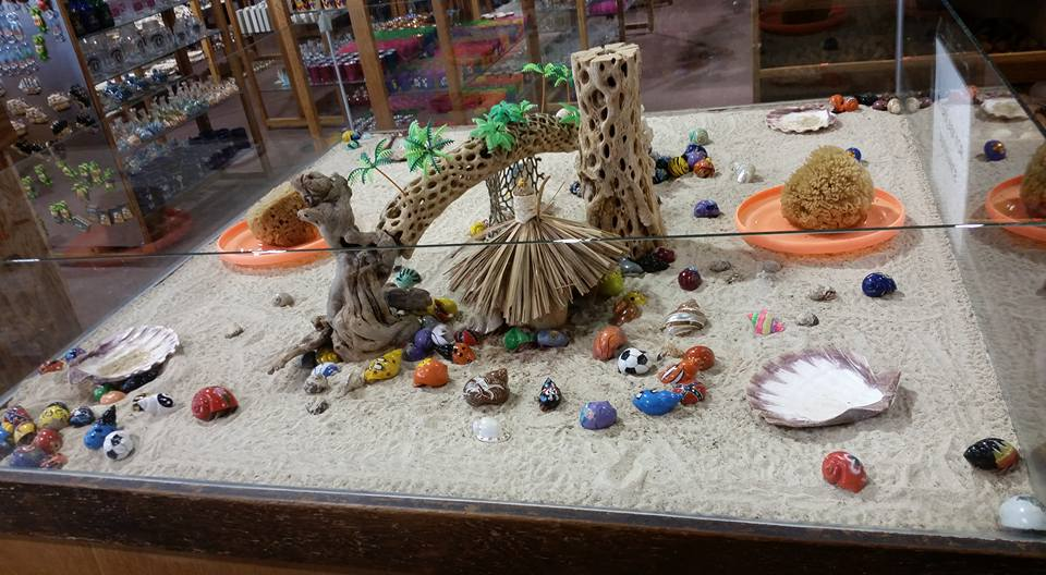 Typical pet store hermit crab enclosure. We need to exact a change! Photo Credit: Jaylo Grace