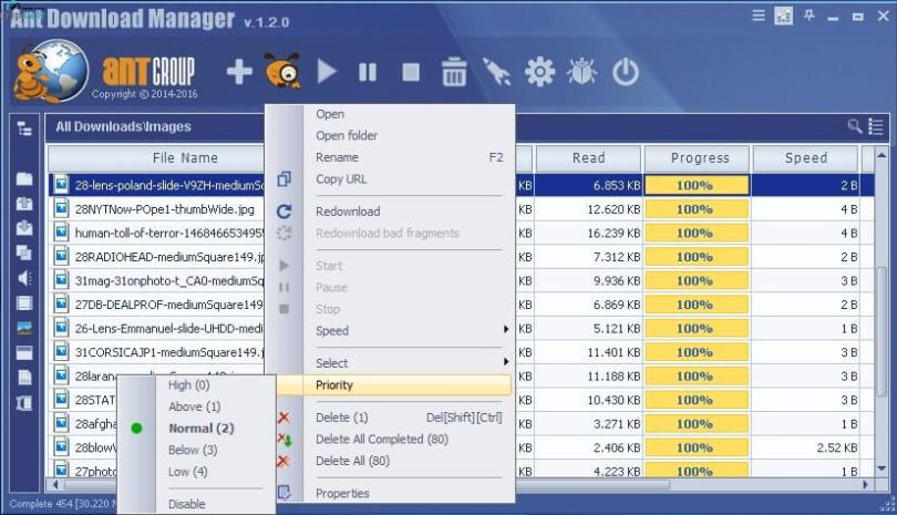 Ant Download Manager Pro Screenshot
