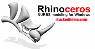 Rhinoceros Cracked