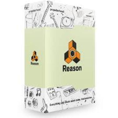Reason 11.3.9 Crack + Keygen Full Setup Latest Download 2021