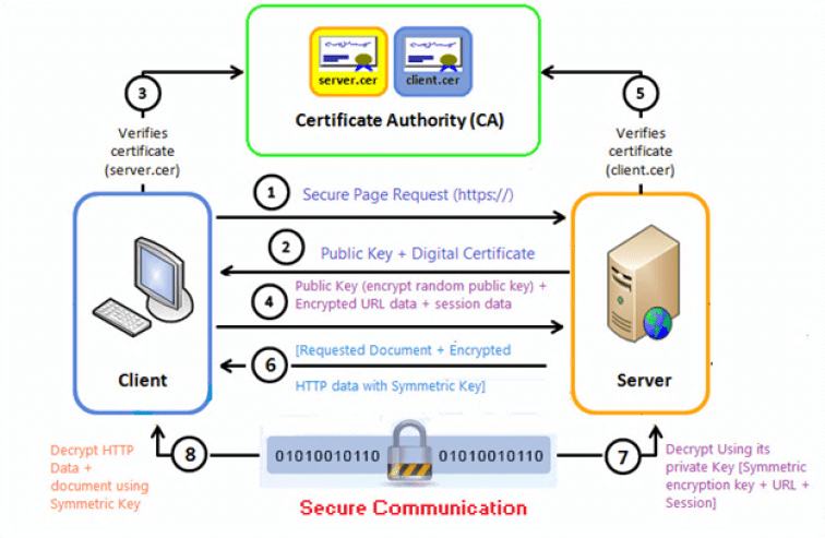 Understanding Ssl Certificates Crackers Creed