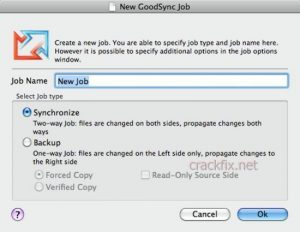 GoodSync Crack 11.7.9.9 With Keys Torrent Free Download [2021]