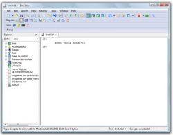 EmEditor Professional 21.0.1 Crack + Serial Keygen 2021 [Latest]