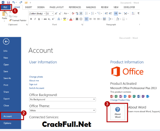 Microsoft Office 2013 Activated Version