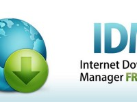 IDM Crack 6.31 Build 8