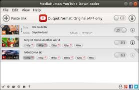 MediaHuman YouTube Downloader 3.9.8.26 Crack