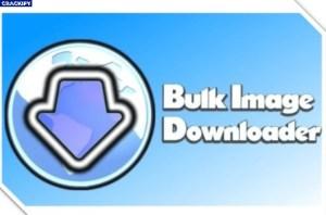 Bulk Image Downloader Free Download