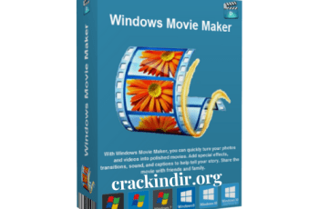 Quick Surface Crack Latest 2021 10 13T212643.607