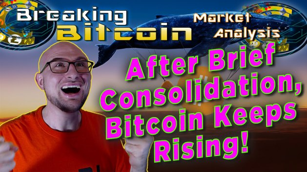 text after brief consolidation bitcoin keeps rising! next to justins ridiculously happy double fist screaming happy face with grpahic background of flying blue whale carrying a plane with huge bitcoin logo over it