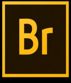 Adobe Bridge CC 2017 v7.0 incl + Patch + Xforce + Painter