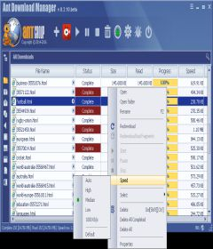 Ant Download Manager Pro 1.12.0 Build 57426 + patch