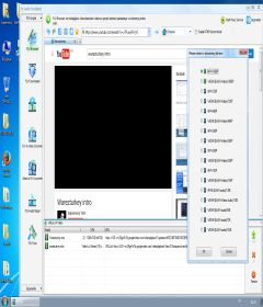 GetFLV Pro 11.7658.889 incl Patch