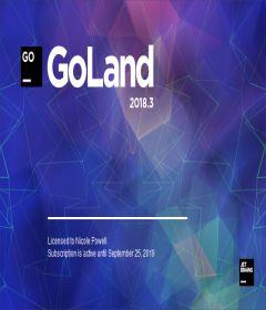 JetBrains GoLand 2018.3.5 + key