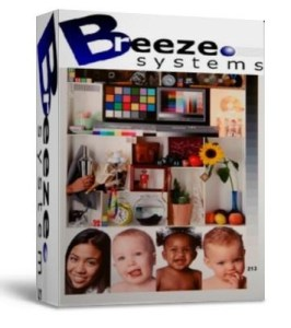 BreezeBrowser Pro 1.11 + key