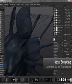 3D Coat 4.9.02 + patch
