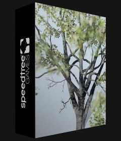 SpeedTree Modeler incl Patch