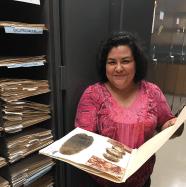 Working in the ASNHC Herbarium, photo taken by Ramey Wauer