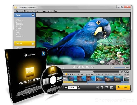 SolveigMM Video Splitter 6 Crack With Serial Key Free Download
