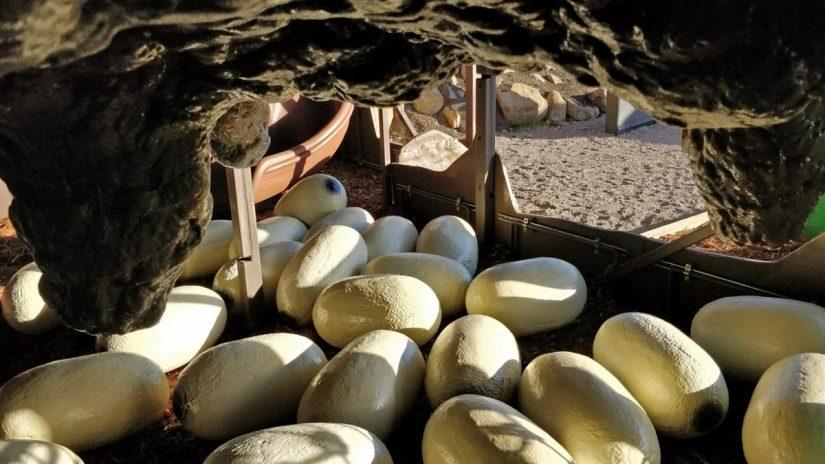Granary Road Ant Farm Eggs
