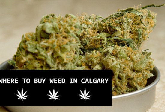 Where to buy marijuana / cannabis / weed / edibles in Calgary
