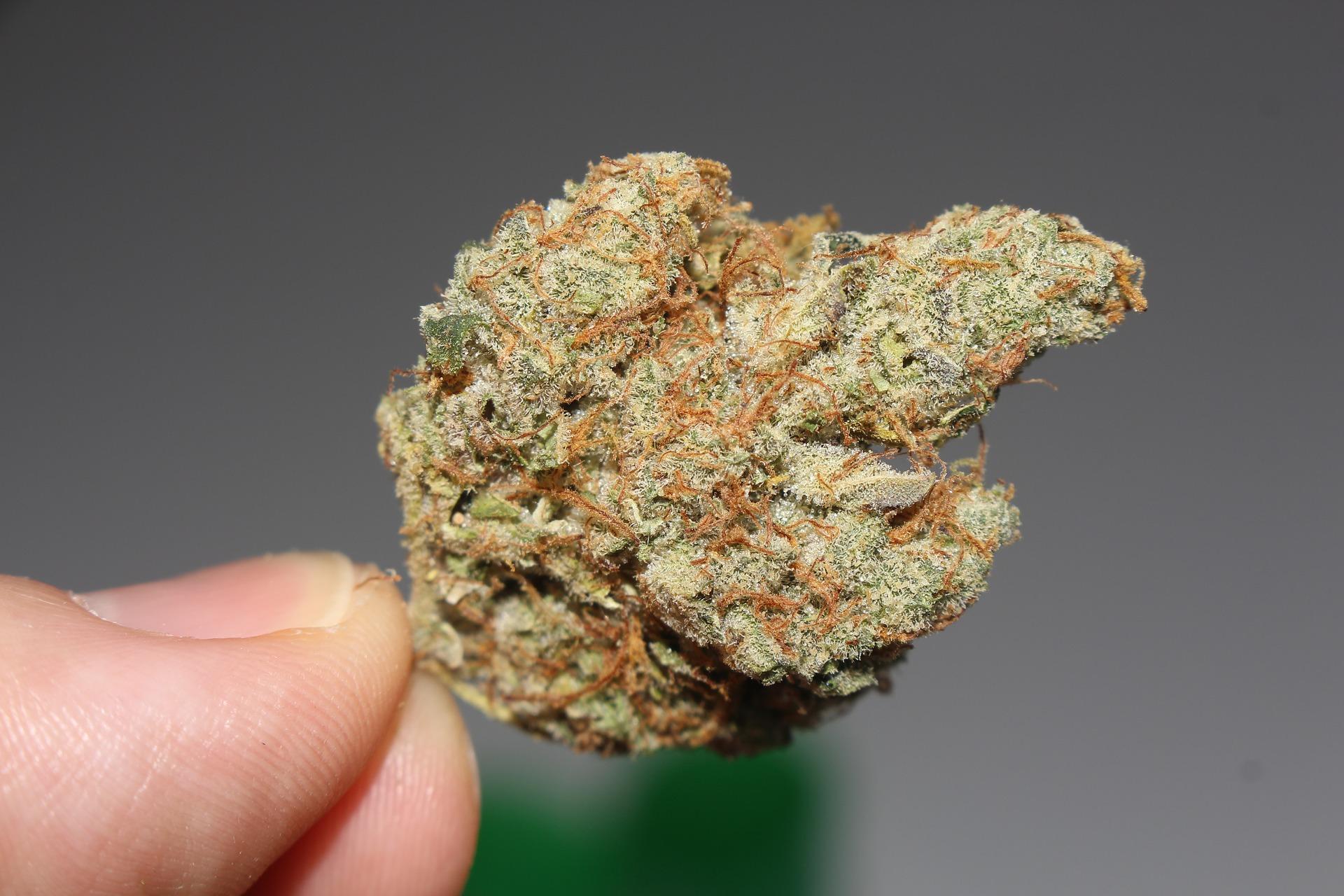 legal cannabis in Canada