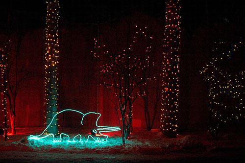 Calgary Zoo Lights Dinosaur