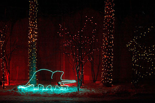 Calgary Zoo Lights Dinosaur