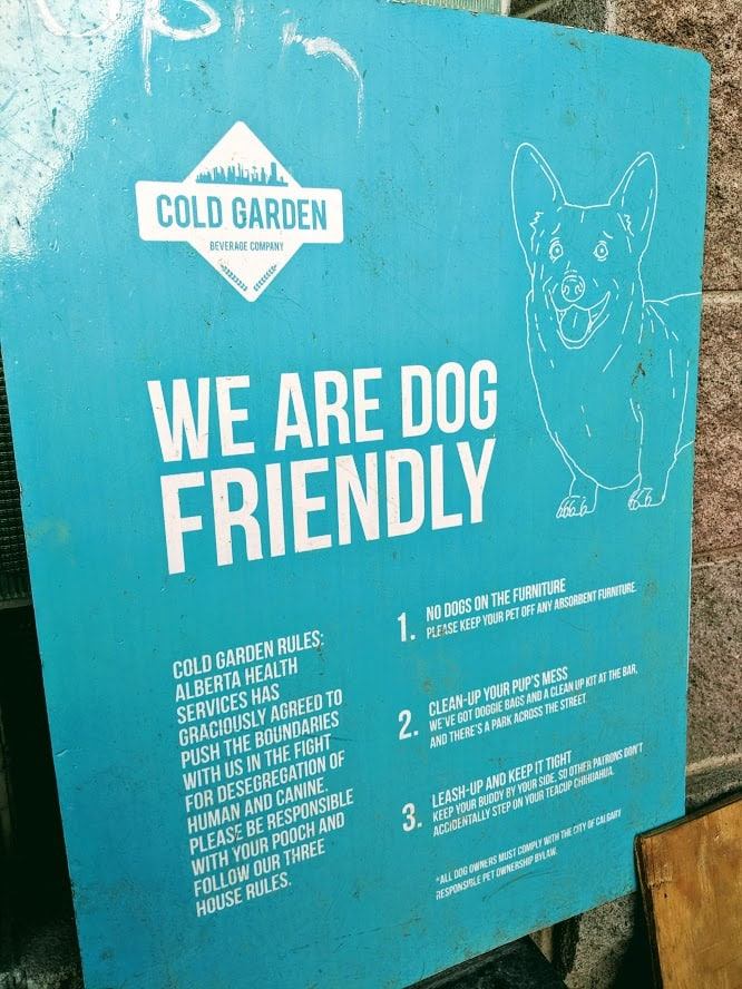 Dog Friendly Patios in Calgary