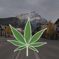 Where to buy marijuana / cannabis / weed in Banff