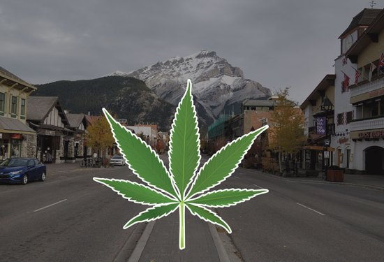 Where to buy marijuana / cannabis / weed in Banff