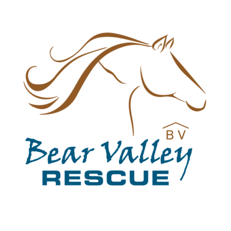 Bear Valley Rescue Amazon Wishlist