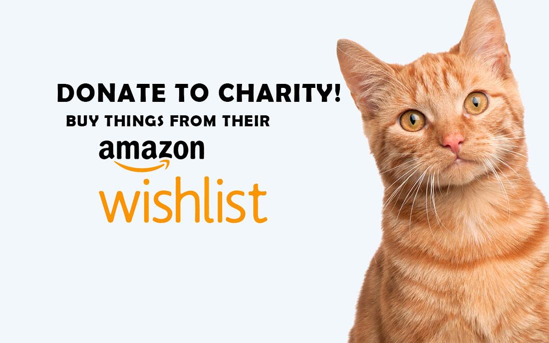 donate to charity buy amazon wishlist items