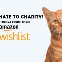Support Charities: Buy Things From Their Amazon Wishlist!