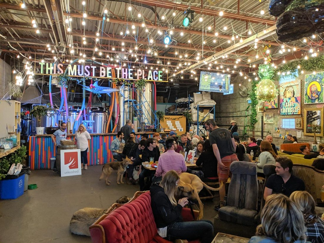 Cold Garden Beverage Company dogs allowed inside brewery