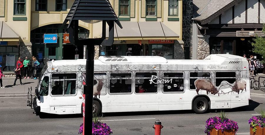 Guide To The Banff Gondola ROAM transit bus outside