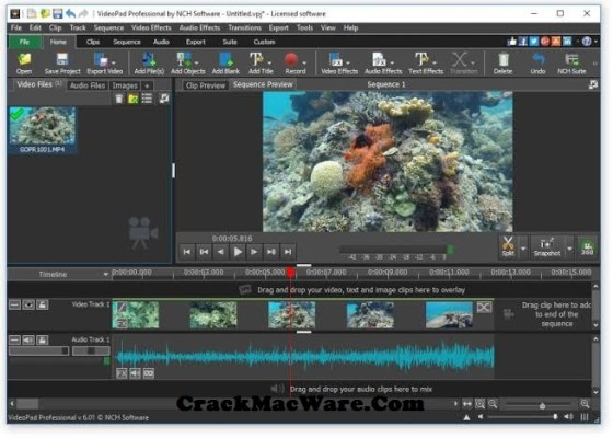 Videopad Video Editor Professional Crack