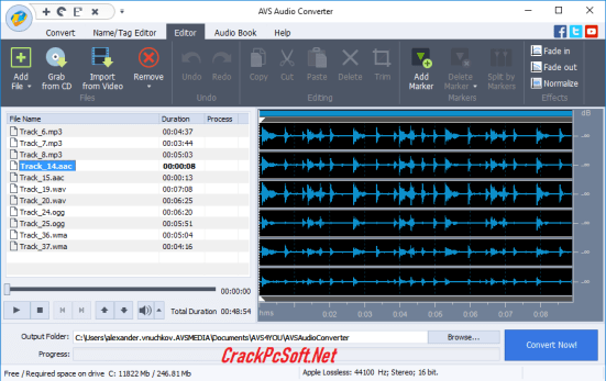 AVS Audio Converter License Key