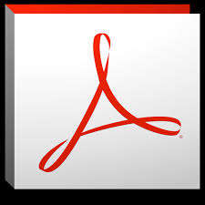 Adobe Acrobat Professional DC 2019 19.0 Crack