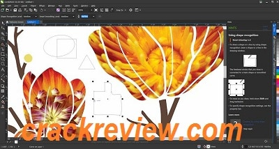 Corel Draw X8 Free Download Full Version With Crack Kickass