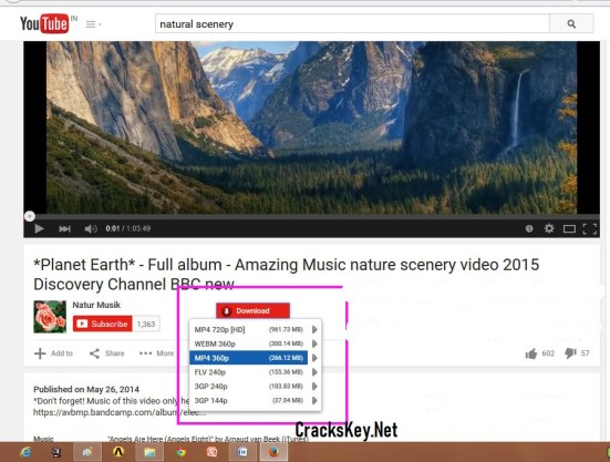 YouTube Video Downloader 5 Serial Key
