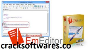 EmEditor Professional 20.0.4 Crack Registration Key Latest 2021