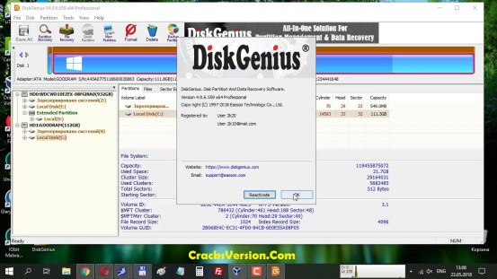 DiskGenius Professional Full Version