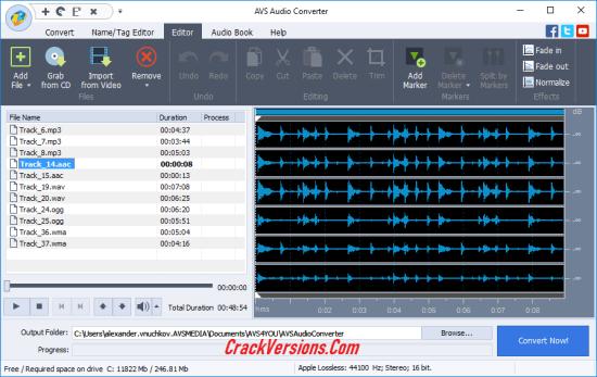 AVS Audio Converter 9 License Key