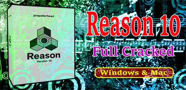 Reason Crack Cover Image